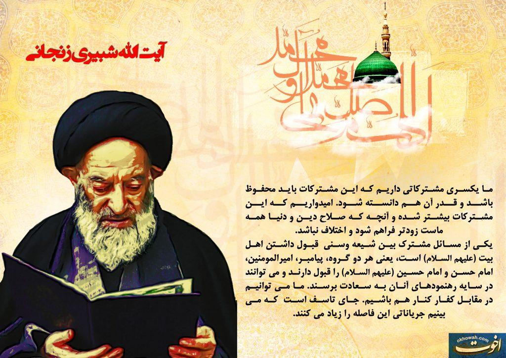 وحدت از دیدگاه بزرگان : آیت الله العظمی شبیری زنجانی