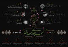 اینفوگرافی عزاداری مهدوی