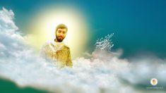 تصویر زمینه شهید محسن حججی