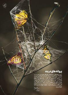 پروانه های دربند